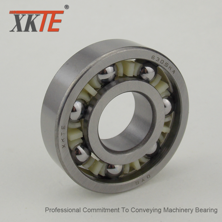 6305 C3 Nylon Ball Bearing