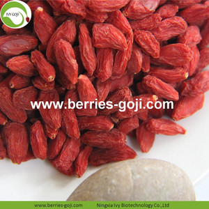 Buy Natural Fruit Anti Cancer Lycium Berries
