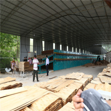 Face Plywood Veneer Dryer Machine for Burma