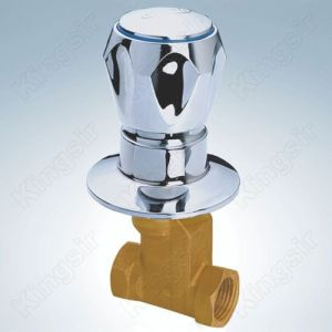 Hot Selling for Shower Stop Valve Simple Brass Globe Valve export to Chile Exporter