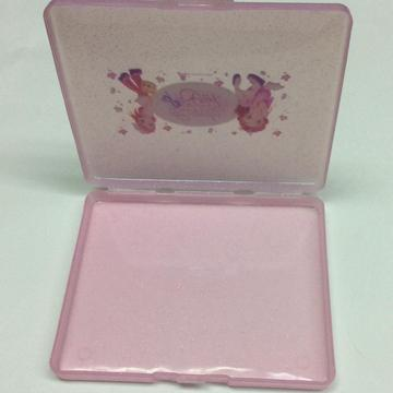 Plastic thin storage case