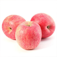 Best Quality for Middle Size Red Fuji Apples NingXia New Special High Grade Red Fuji Apples supply to Solomon Islands Wholesale