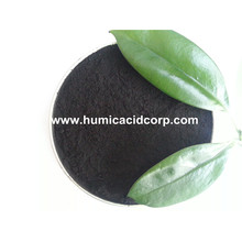 Nitro humic acid powder for Japan