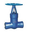 High-pressure Power Station Gate Valve