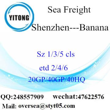 Shenzhen Port Sea Freight Shipping To Banana