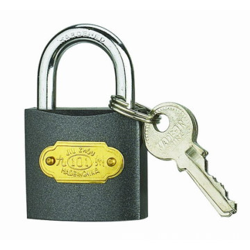 China for Square Iron Padlock 25 MM Colour Iron Padlocks supply to Estonia Suppliers