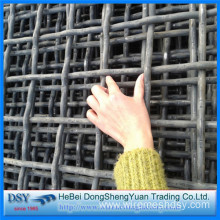 Stainless Steel Weave Crimped Wire Mesh for Sale