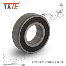 Good Quality for China Rubber Sealed Ball Bearing, Rubber Sealed Deep Groove Ball Bearing, Rubber Seals Deep Groove Ball Bearing Exporter Seals Ball Bearing 6205 2RS C4 For Idler export to Saudi Arabia Factories