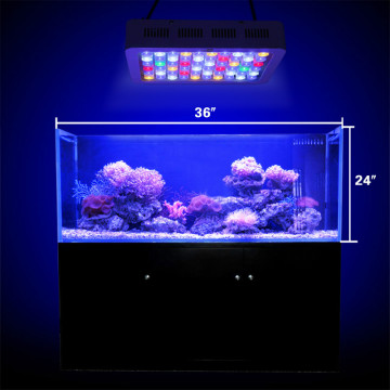 Aloaia e le Akarasi Lisi Fish Tank Light For Waterwater
