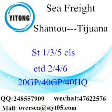 Shantou Port Sea Freight Shipping To Tijuana