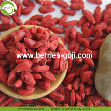 High Standard Authentic Premium Conventional Goji Berry