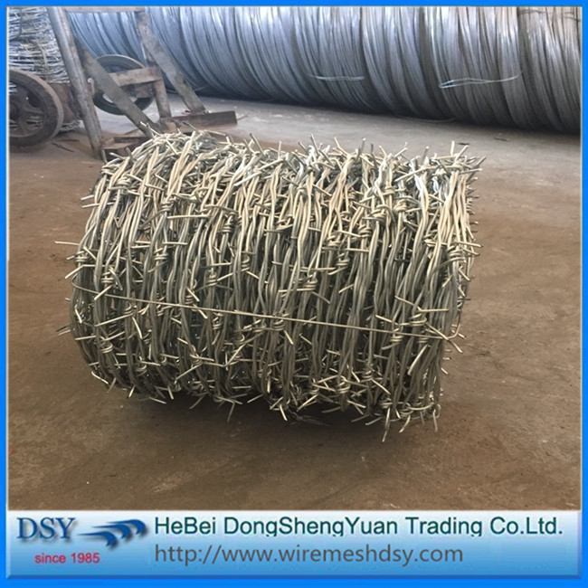 hot dip galvanized and stainless steel barbed wire