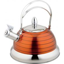champaign gold Stainless Steel Kettle