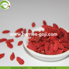 Factory Supply Variety Bulk Fruit Product Goji Berry
