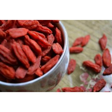 Export Goji Berry Cream