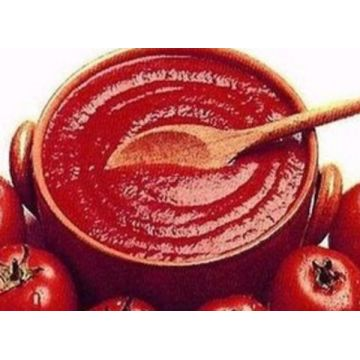 2200g Chinese Price Organic Canned Tomato Paste