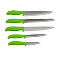 Plastic Handle 2CR13 Blade Knife Set