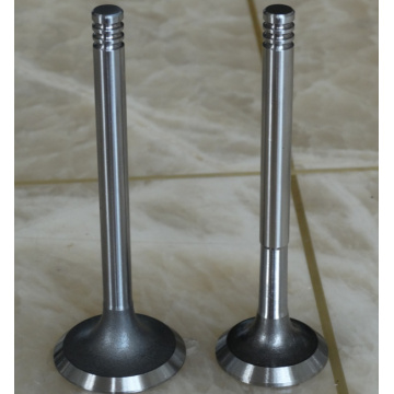Heavy Truck Engine Valve Spare Parts