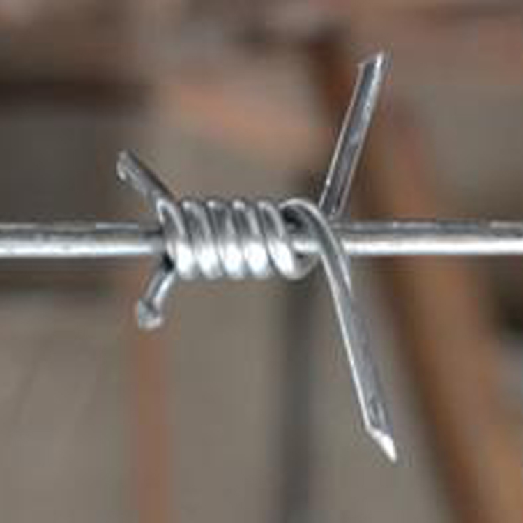barbed wire (11)