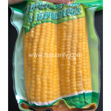 Golden yellow good taste sweet corn