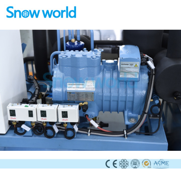 Snow world 10T Containerize Block Ice Machine