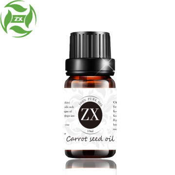 Factory directly privide Carrot Seed Essential Oil