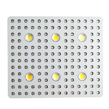 3000W COB LED Grow Light Kamerplanten