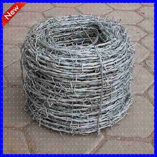 Barbed Wire21