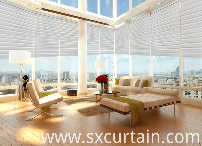 Roller Blind Zebra Curtain Shade
