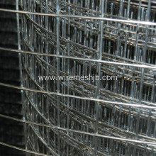 1''X 1'' Galvanized Welded Wire Mesh Rolls