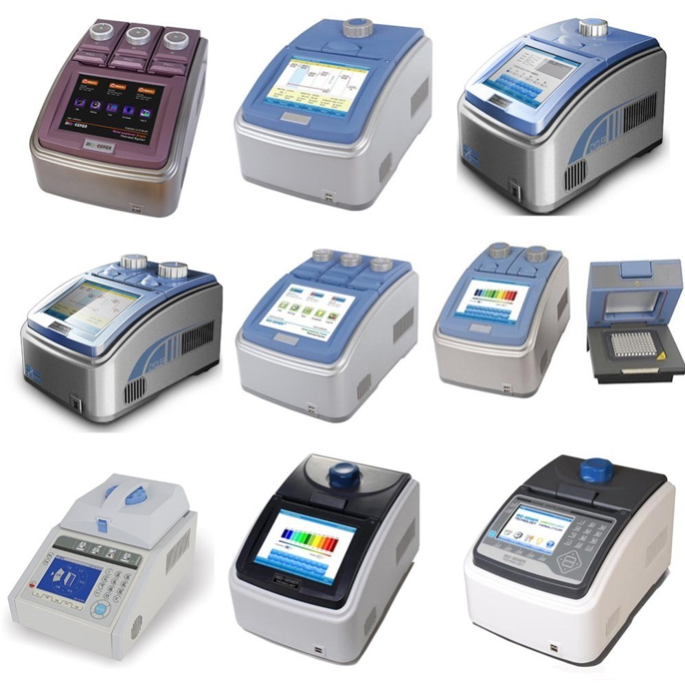 384 well gene amplification thermal cycler machine