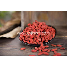 Nutrition Dried Goji Berries with high quality