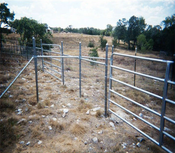 Popular Hot Dip Galvanized Fence