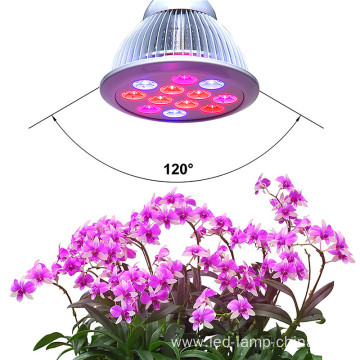 Helper Of Family Plant Light And greenhouse 12w Par LED grow light