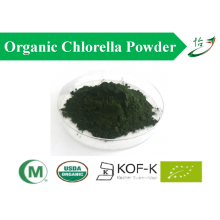 Organic Cracked Cell Wall Chlorella Powder