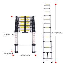 ODM for Double Side Telescopic Ladder Aluminum Telescopic step ladder with 10steps export to Saudi Arabia Factories