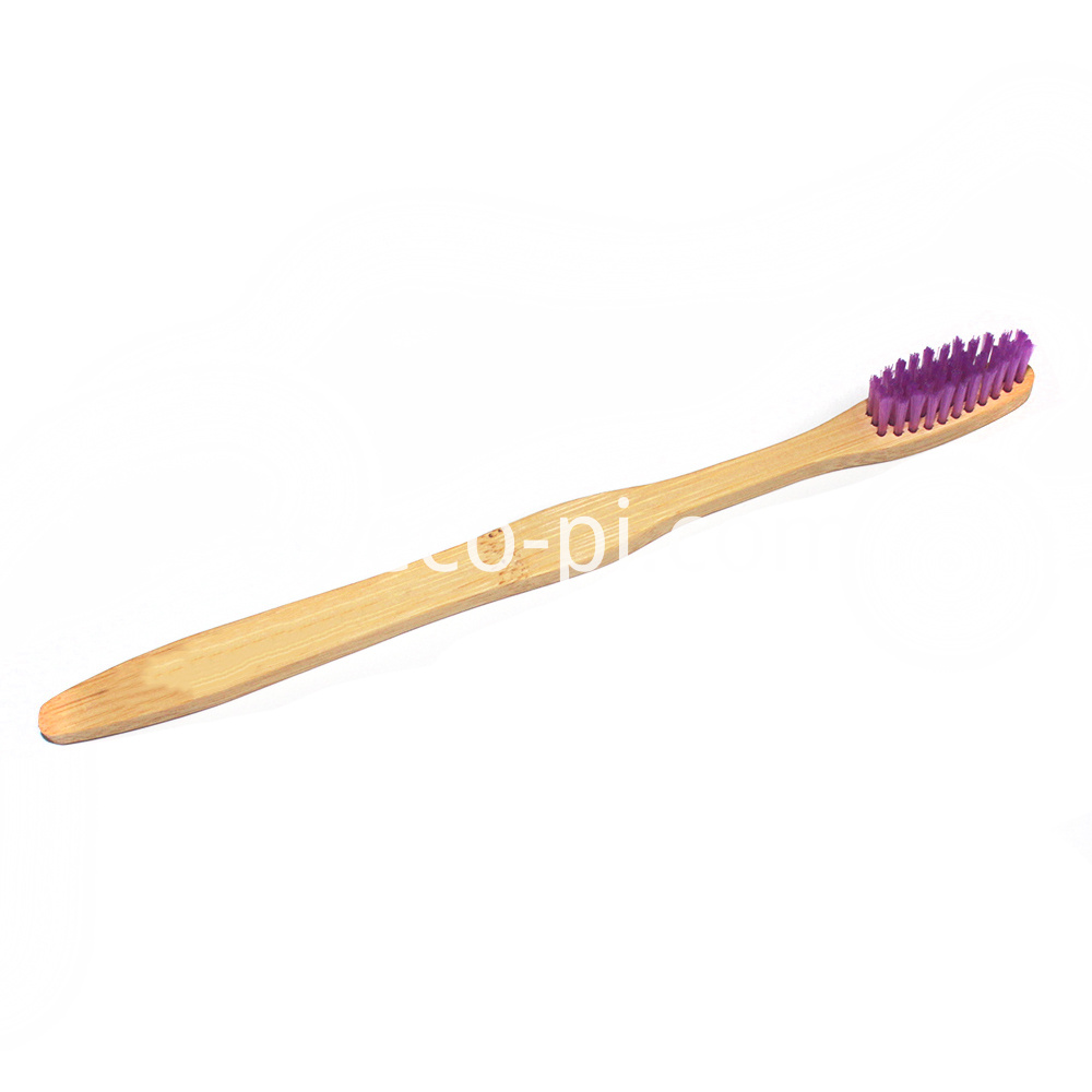 Free Sample Bamboo Toothbrush