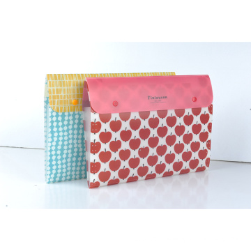 Expanding File Folder with button closure