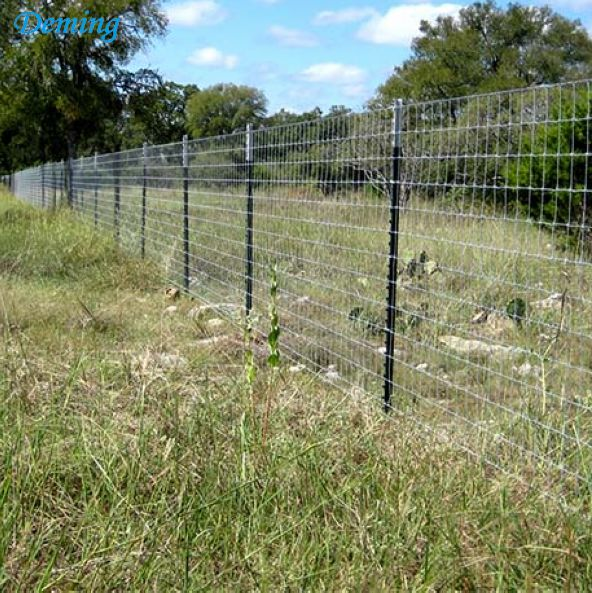 Farm Used Metal and Fence T Post