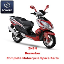 Special for Supply Znen Scooter Starter Motor, Znen Scooter Carburetor, Znen Scooter CDI to Your Requirements ZNEN Berserker Complete Scooter Spare Part supply to Germany Supplier