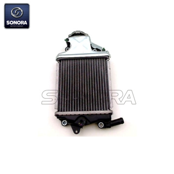 HONDA PCX125 PCX150 Radiator 19100-kzy-700701 Top Quality