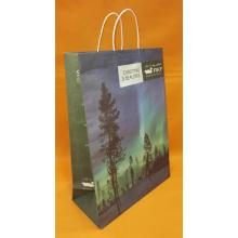 OEM manufacturer custom for Brown Kraft Paper Bag With Twist Handle Print kraft paper bag export to Luxembourg Importers