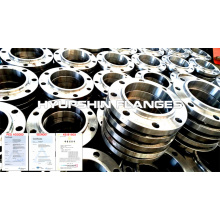Steel Flange Slip on Hubbed Boss ANSI B16.5