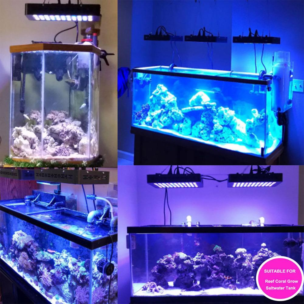 Aquarium LED Light with Timer