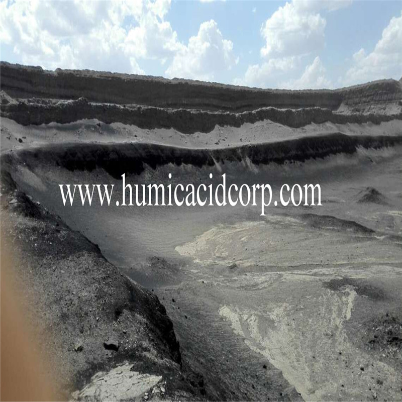 High quality humic acid slow release 70% price