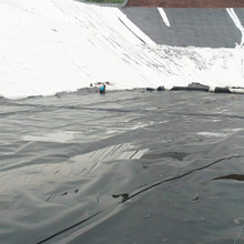 Cheaper price HDPE prawn pond geomembrane