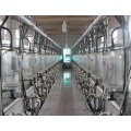 Customized parallel goat milking parlor
