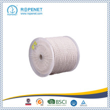 Good Quality for 3-Strand Twisted Cotton Rope Natural Cotton Twisted Rope with Competitive Price export to Russian Federation Wholesale
