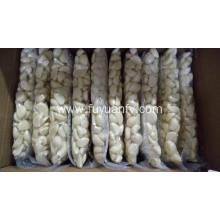 Factory Price for Bulk Fresh Peeled Garlic Fresh Peeled Garlic in Jinxiang export to Guadeloupe Exporter
