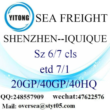 Shenzhen Port Sea Freight Shipping To Iquique